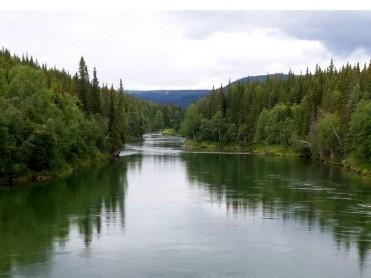 Ny fiskeforvalter på plass Vefsna