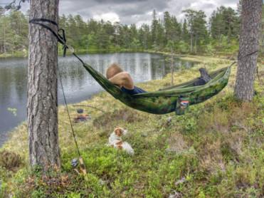 Statskog går inn i «Hold Norge Rent»