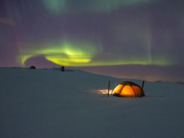 Søker sjef for Statskog i Troms