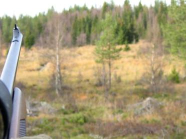 Stor rift om Statskogs jaktmarker