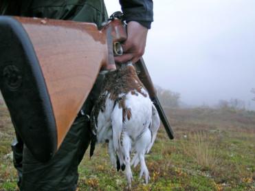 Stor rift om fuglejakta