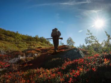 Drømmejobb på Helgeland